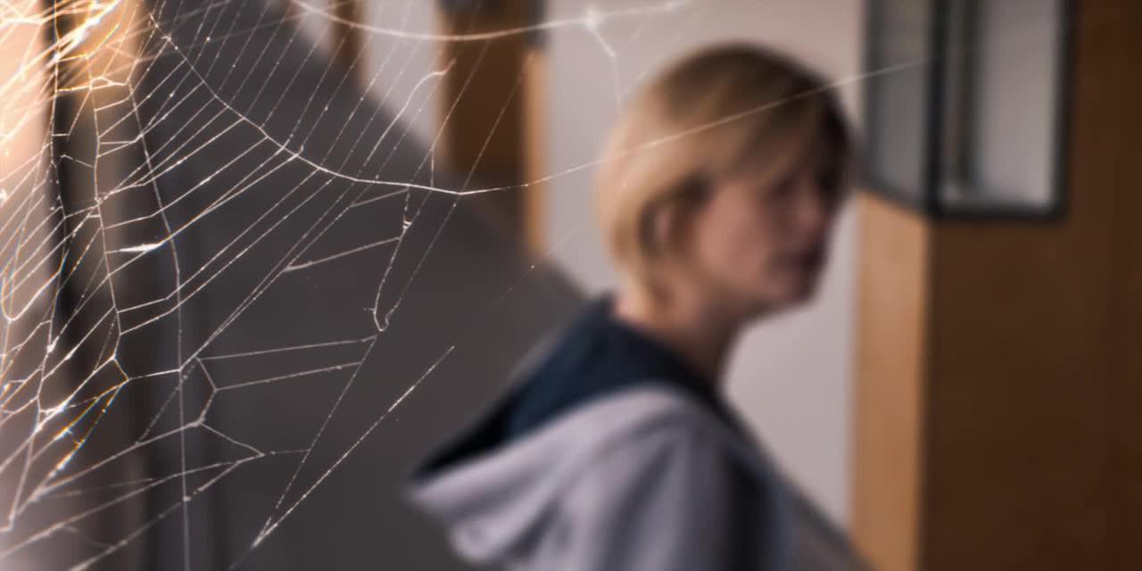 spiderweb (1)